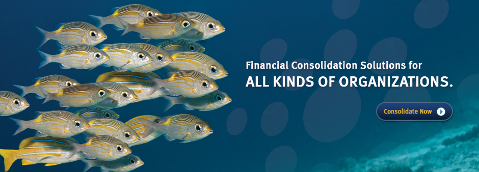 financial-consolidation