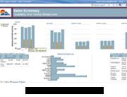 IBM Cognos Express Reporter screenshot